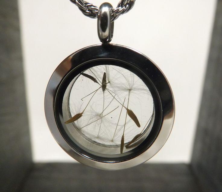Collier médaillon flottant en verre, graines fleurs de pissenlit, acier inoxydable : Collier par long-nathalie