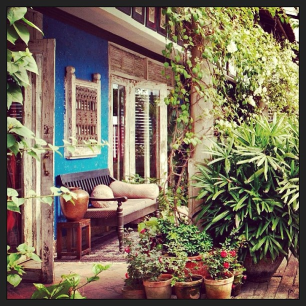 Home Design Exterior Ideas In India: Indian Home Garden By Design India!#garden #Padgram