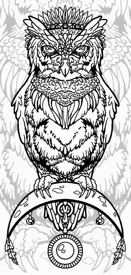387 best Uilen/owl images on Pinterest | Owls, Barn owls and ...