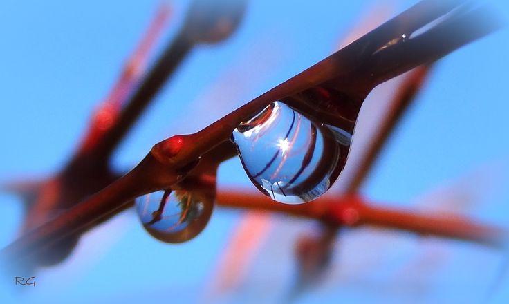 Het dooit... stralende blauwe lucht.... af en toe een lekker zonnetje!