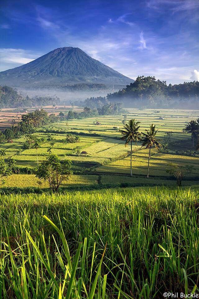 Bali Gunung Agung In The Background In Indonesia Pemandangan Wisata Asia Fotografi Alam