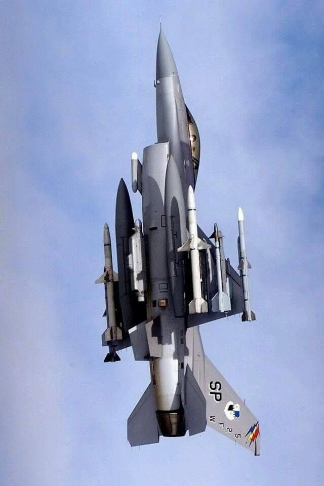 F-16 Fighting Falcon (The Thunder Of War)