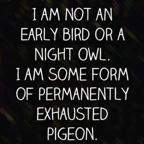 IM NOT AN EARLY BIRD OR A NIGHT OWL. I AM SOME FORM OF PERMANENTLY EXHAUSTED PIGEON!!! funniest-quotes-ever-013