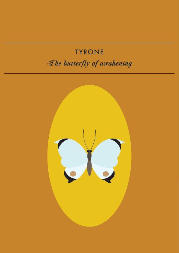 TYRONE THE BUTTERFLY OF AWAKENINGThe spirit animal of awakening, Tyrone the butterfly, draws attention to those moments when we suddenly become aware of something, big or small, that is signifi...
