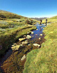 Hiking NSW - Walking Tours - Bushwalking - Walks in NSW - Visit NSW