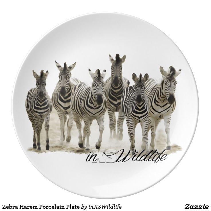 Zebra Harem Porcelain Plate