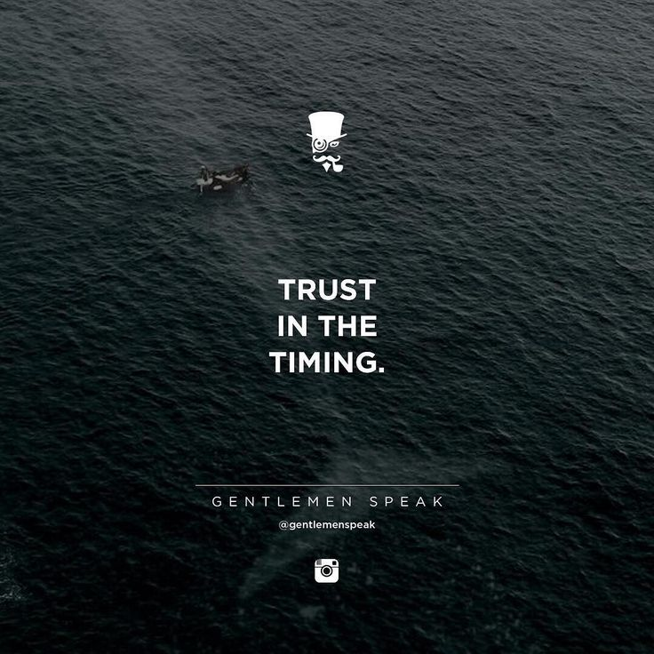 #gentlemenspeak #gentlemen #quotes #follow #wale #trust #timing #perfecttiming #sea