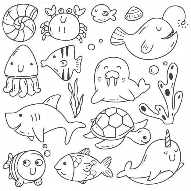 10+ Sea animals clipart line drawing information