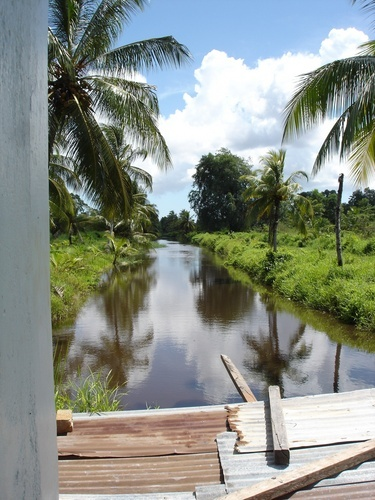 Frederiksdorp, Suriname. Frederiksdorp was a coffee and cocoa plantation on the Commewijne River in the district Commewijne in Suriname. The plantation was situated on the eastern bank, near Guadeloupe and downstream alongside plantations Buitenrust and Johan Margaret.