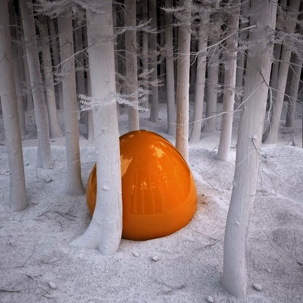 Anders 2015: 4. Andere fotografie  Eelco Brand, O.digi, 2013, 100 x 100cm  Eelco Brand Vormen en voorstelling zijn bij Brand een zelf samengestelde digitale werkelijkheid waarin de natuur vaak centraal staat.