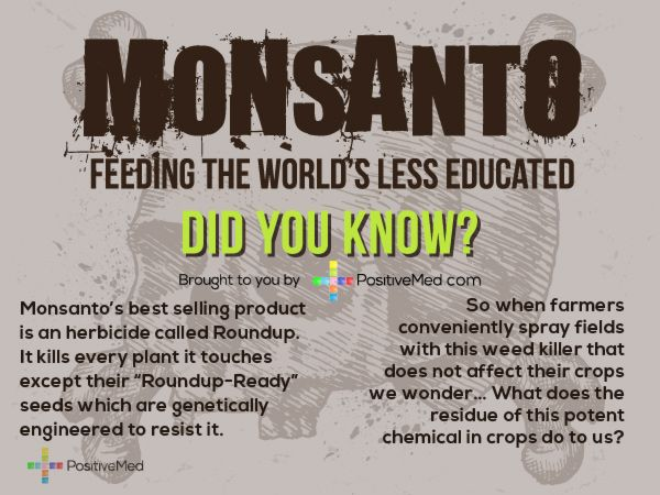 MONSANTO started 1901 to make saccharin (carcinogen?) . . . production based on chemicals including toxic polychorinated biphenyls (PCBs) & dioxin linked to liver damage, neurological, immune, endocrine, & reproductive systems. Best seller ROUNDUP kills every plant it touches, & Agent Orange used in Viet Nam. Now GMOs, genetically modified organisms . . . seeds . . . who ever controls seeds controls the world's food supply . . .