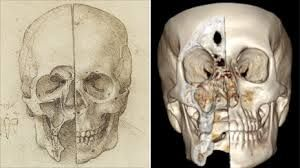 leonardo da vinci + treatise on painting - skull