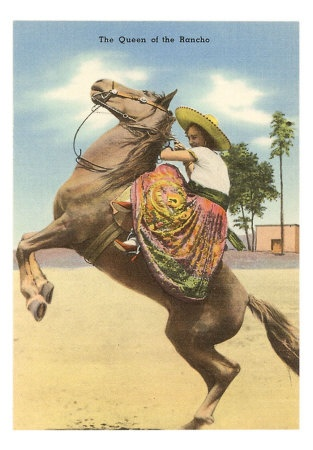 ✢ STYLE ✢ Viva Mexico   Queen of the Rancho, Charra on Horse
