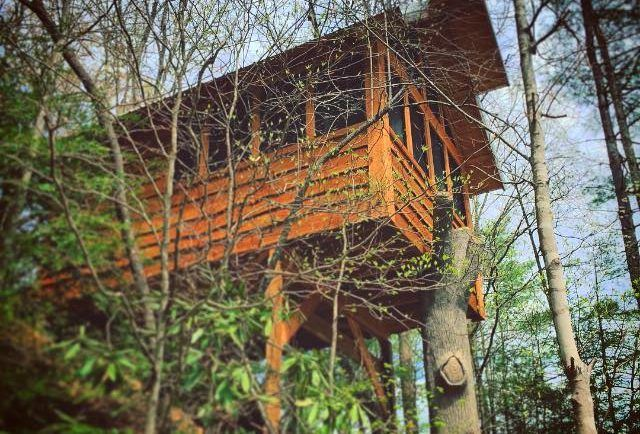 1000 Images About Camping In The Smoky Mountains On