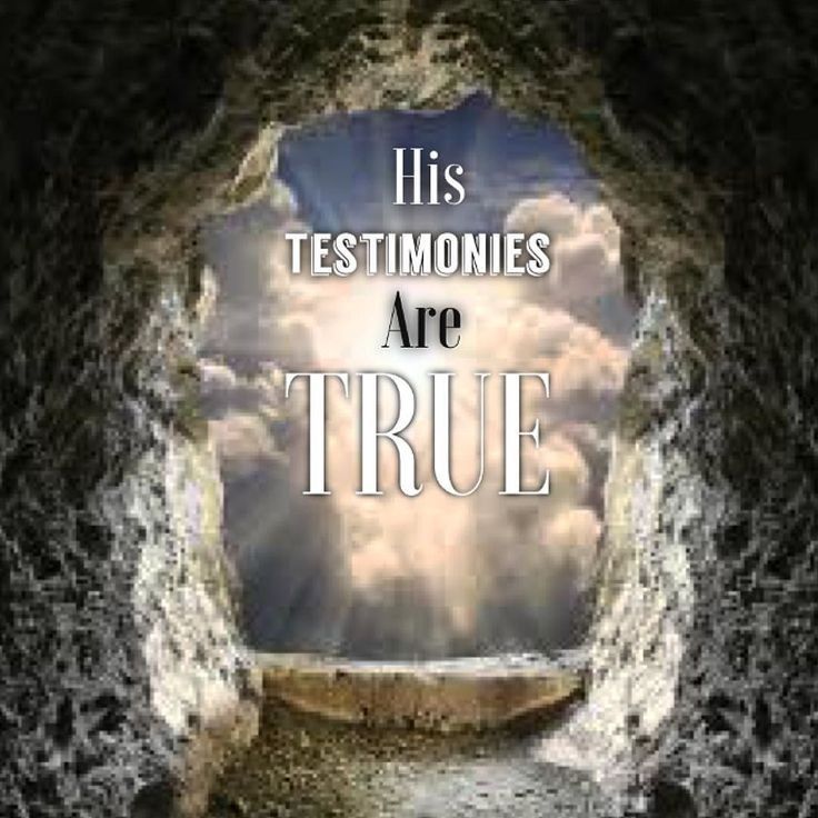 """His testimonies are true. Jesus is the son of God.  John 21:24 This is the disciple who testifies to these things and who wrote them down. We know that his testimony is true. John 19:35 The man who saw it has given testimony and his testimony is true. He knows that he tells the truth and he testifies so that you also may believe. Luke 8:39""""Return to your home and declare how much God has done for you. And he went away proclaiming throughout the whole city how much Jesus had done for him. 2…"""