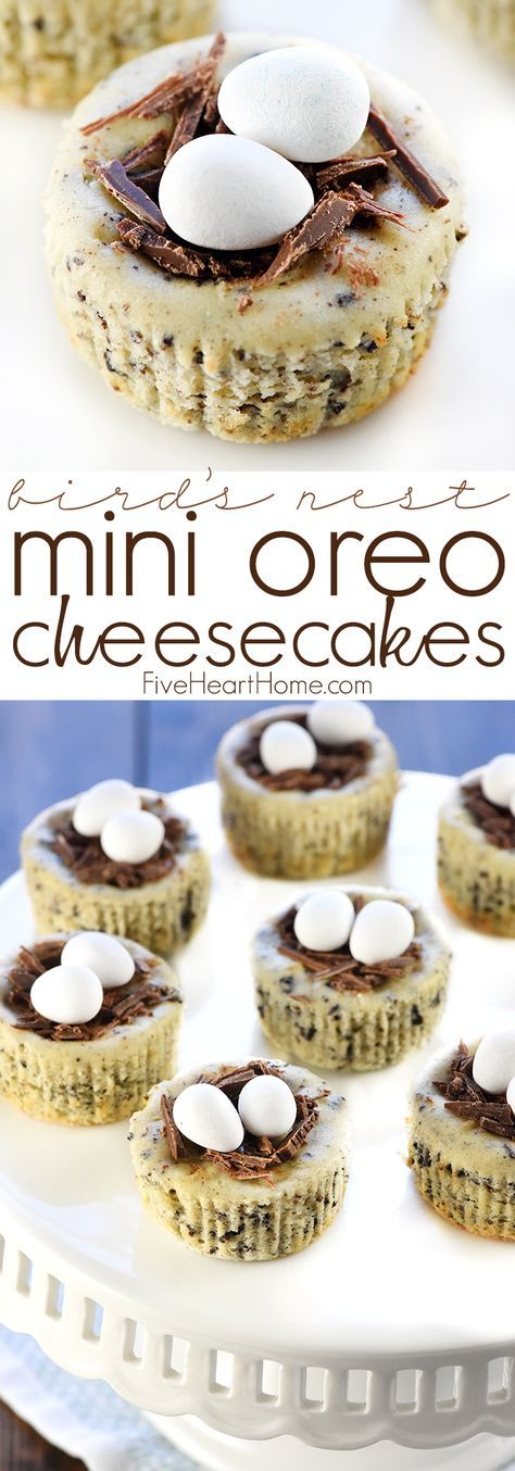 Bird's Nest Mini Oreo Cheesecakes | Easter Dessert Recipe ~ simple cheesecake fi…   – Easter
