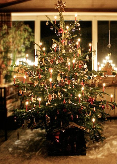 a christmas tree with real candles candles and christmas tree candle clips add warmth to - German Christmas Tree
