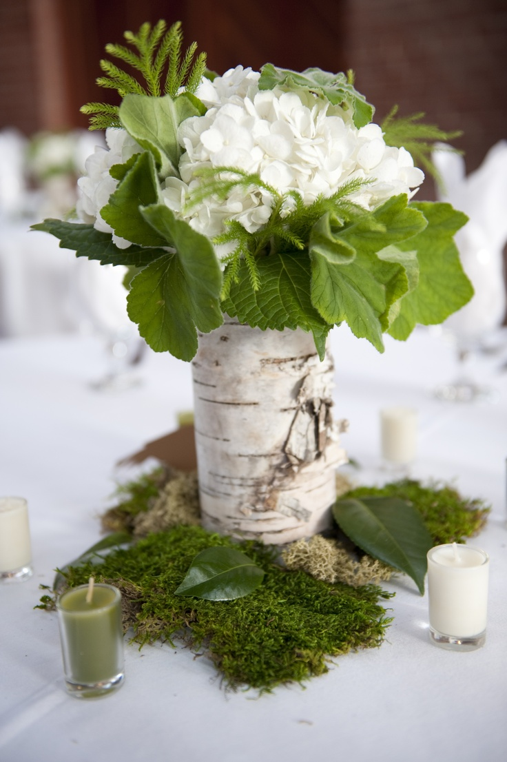 birch centerpiece (replace hydrangea with white ranunculus or garden rose, add in dark green leaves/accents)
