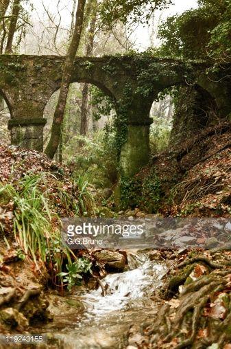 Image result for old stone bridge jungle