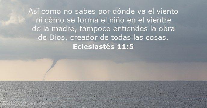 Así como no sabes por dónde va el viento ni cómo se forma el niño en el vientre de la madre, tampoco entiendes la obra de Dios, creador de todas las cosas.