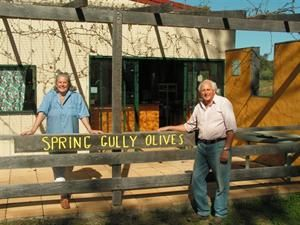 SPRING GULLY OLIVES  1200 olives trees producing superb extra virgin olive oil. We also make marinates, pastes and olive relish for sale at our farm shop.   Bush camping is allowed on the property for those who would like to have a few days away from the stress and strain of city life.