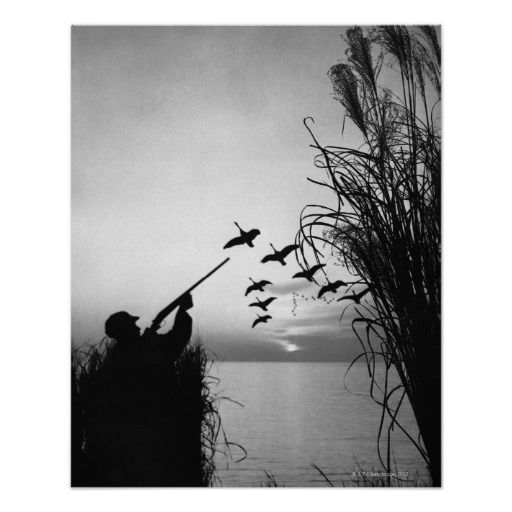 Duck hunting hunting and ducks on pinterest