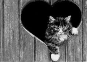 Cat 2 by tajus
