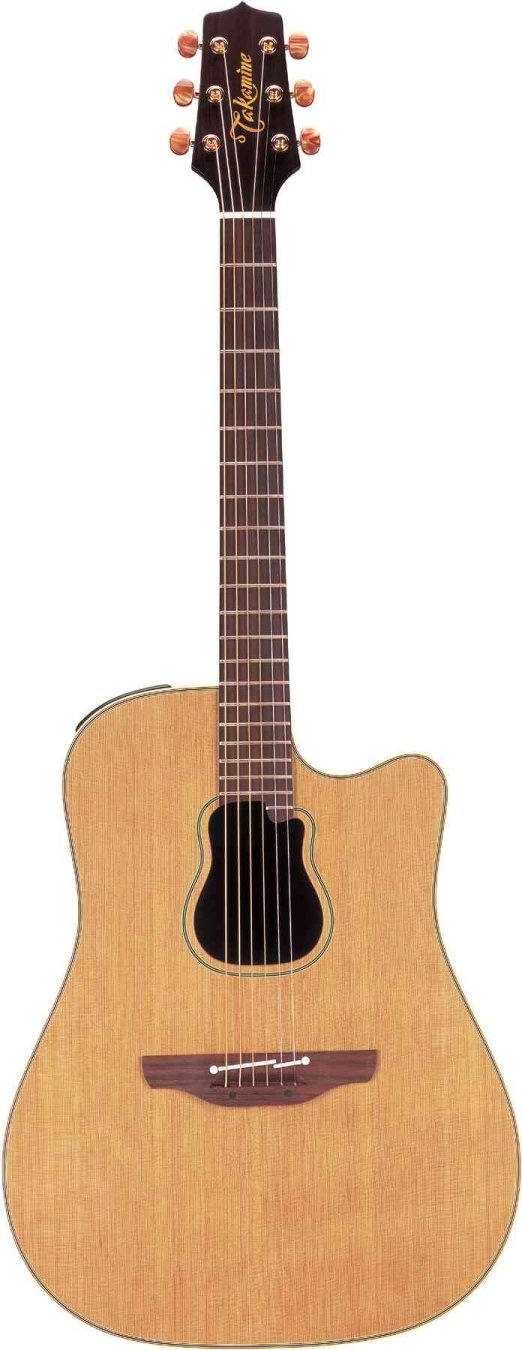 Garth Brooks Takamine model GB7C
