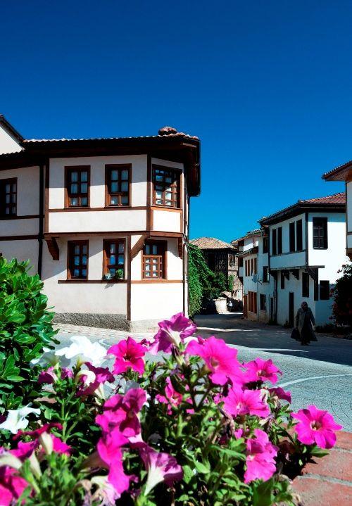Osmaneli Evleri, Bilecik, Türkiye