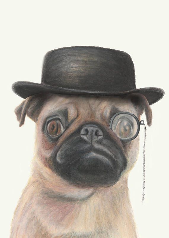 Pug wearing Monocle and Hat  fine art print/ pencil drawing /