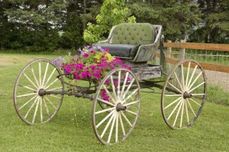 calesa de caballos clásicos occidentales con flores y árboles en el fondo Foto de archivo