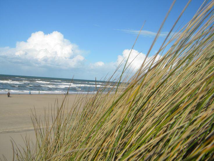 Meer dan 1000 afbeeldingen over inrichten strandhuis op Pinterest ...