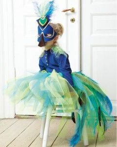 Peacock costume - easy, no sewing!