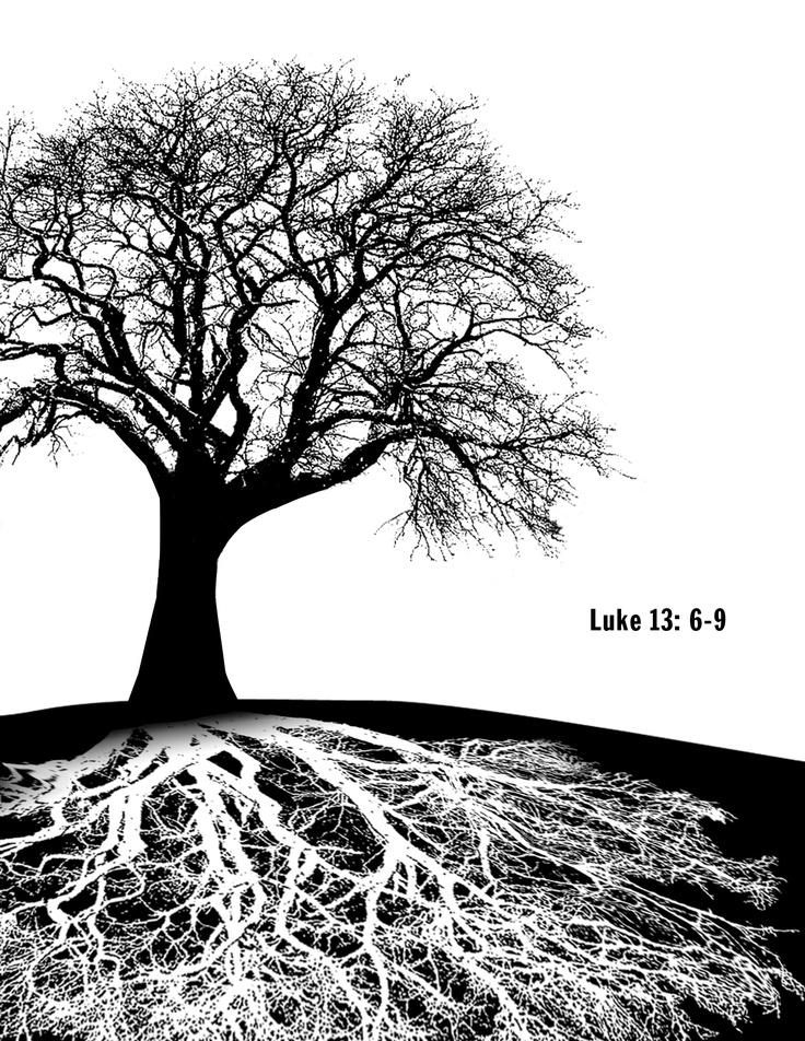 Luke 13: 6-9