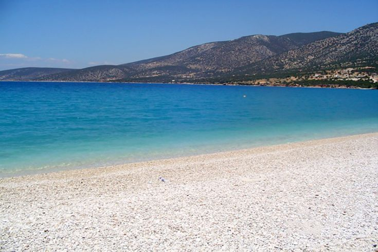 Coastal land of Kranidi Argolis in Peloponnese.  An the excellent location is the Saladi of the municipality of Kranidi Argolis. There we offer for sale a land of 126,000 sq. As a development project and tourism it can to construct a luxury tourist resort of 50,000 sq.