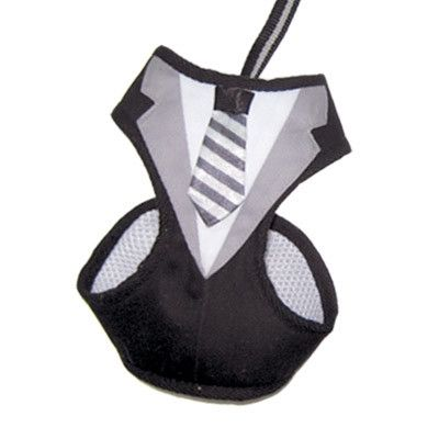 This EasyGO Harness has a cute necktie and jacket design in the front, perfect f… – dog love
