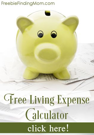 Free Living Expense Calculator - Quick and easy way to find out how you're doing each month!