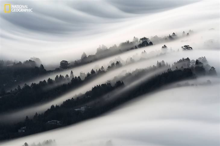 Naturfotograf National Geographic & # 39; 16 | Design und Fotografie – Todo-Mail