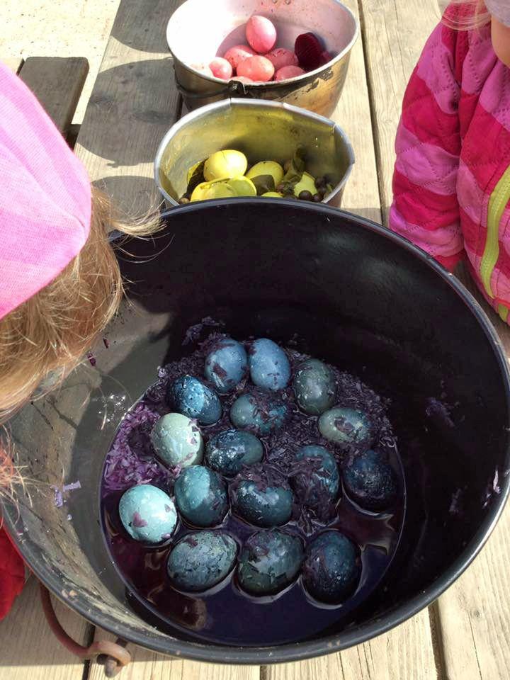 De forskellige farver er lavet ved at tilsætte forskellige ingredienser til blandingen af vand og eddike. De gule er lavet med 2 spsk gurkemeje. De blå er lavet med et glas rødkål, 300 g inkl. væde. De lyserøde er lavet med et glas rødbeder, 300 g inkl. væde. De grønne er lavet med 1 spsk gurkemeje, 50 g blåbær og 100 g spinat.