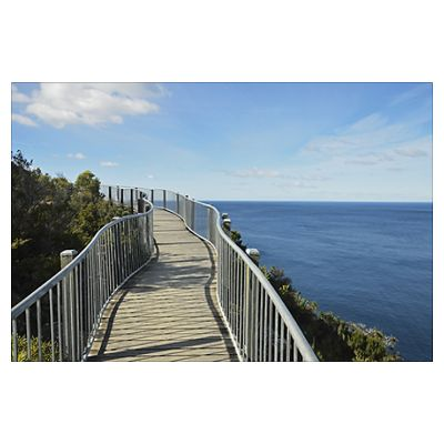 Walkway, Cape Tourville, Freycinet National Park Poster