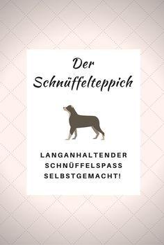 Jeder Hund sollte einen Schnüffelteppich haben und DU kannst ihn ganz leicht selber machen.