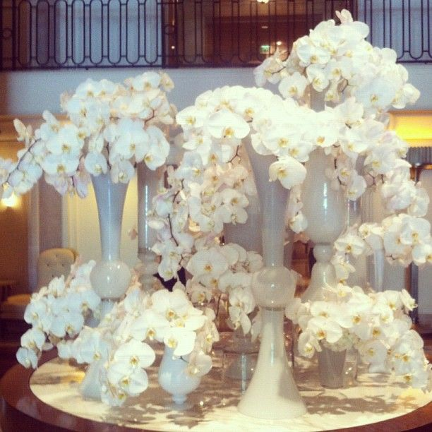 @Beverly Wilshire (A Four Seasons Hotel)'s lobby floral arrangements never cease to amaze us, but this all-white orchid display was truly a wow in person!