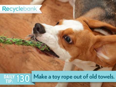 Use old dish towels to make a homemade dog rope.: Dogs Ropes, Old Dishes, Good Ideas, Dogs Stuff, Crafts Rooms, Homemade Dogs, Dish Towels, Dishes Towels, Animal