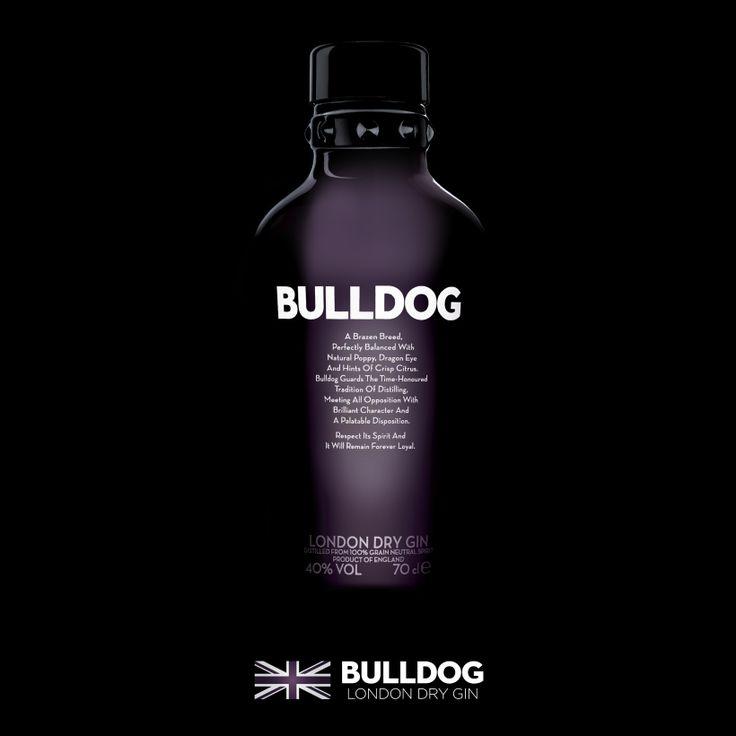 Key visual Bulldog