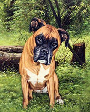 Ölgemälde auf Leinwand! Boxer im Wald. Leinwandbild malen lassen