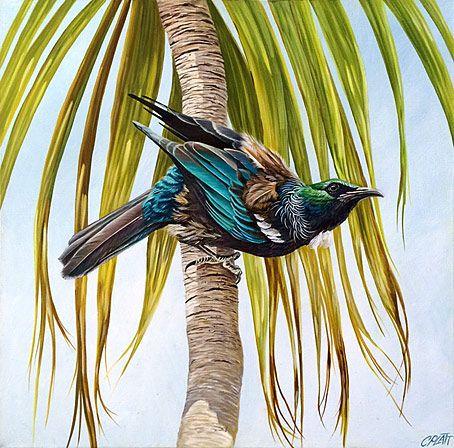 craig platt nz native bird artist