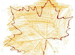 German Leaf Paper Rubbing Craft  (Love how the tracing enhances the rubbing. We could use amazing colors, roughly tear the edges of the paper, and mount on a great background.)