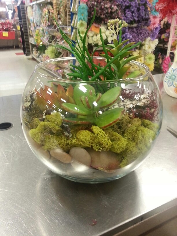 1000 images about fish bowl terrariums on pinterest for Fish bowl rocks