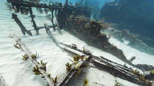 Google Street View a pu cataloguer les restes du bateau à vapeur, la Mary Celeste, qui a joué un rôle essentiel dans la Guerre Civile américaine.