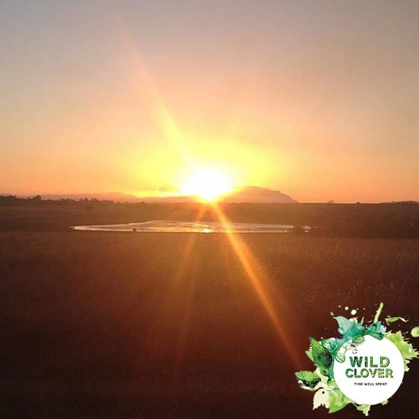 What a lovely sunset photo taken of the views on our farm! Thank you @poofynat for this stunning photo.